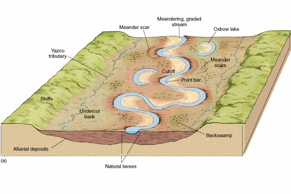 Terrace and floodplain diagram freshwater marsh diagram for What is the definition of terrace