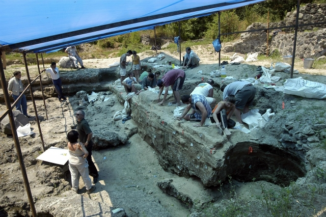 Dmanisi excavation site